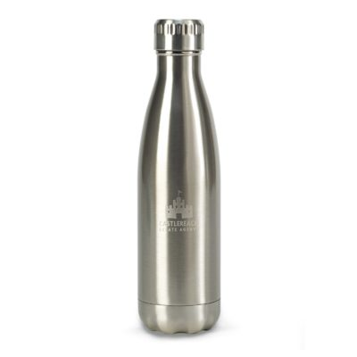 Oasis Double Wall Stainless Bottle - 17 Oz. Silver