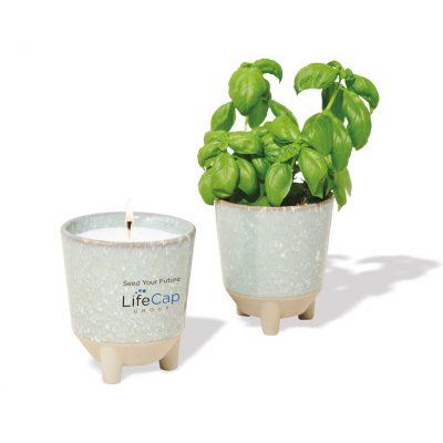 Modern Sprout® Glow & Grow Live Well Gift Set - Blue Green: Herb Garden w- Basil Seeds