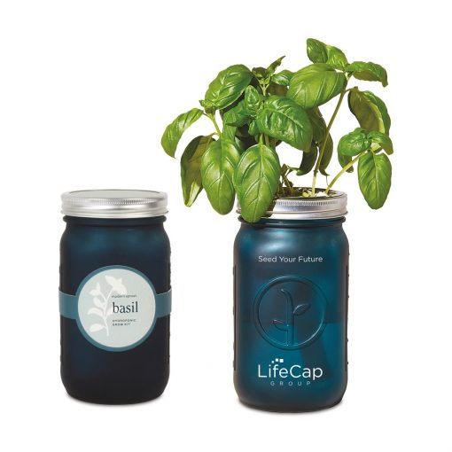 Modern Sprout® Indoor Herb Garden Kit - Teal