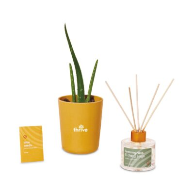 Modern Sprout® Find Balance Take Care Kit - Aloe - Find Balance