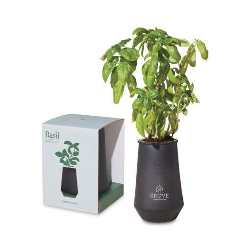 Modern Sprout Tapered Tumbler Grow Kit - Black-Basil