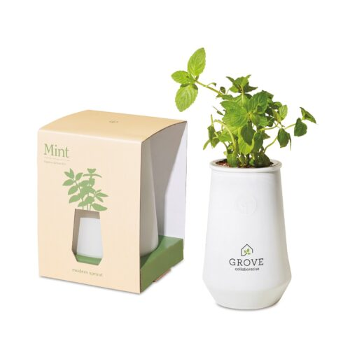 Modern Sprout Tapered Tumbler Grow Kit - White-Mint